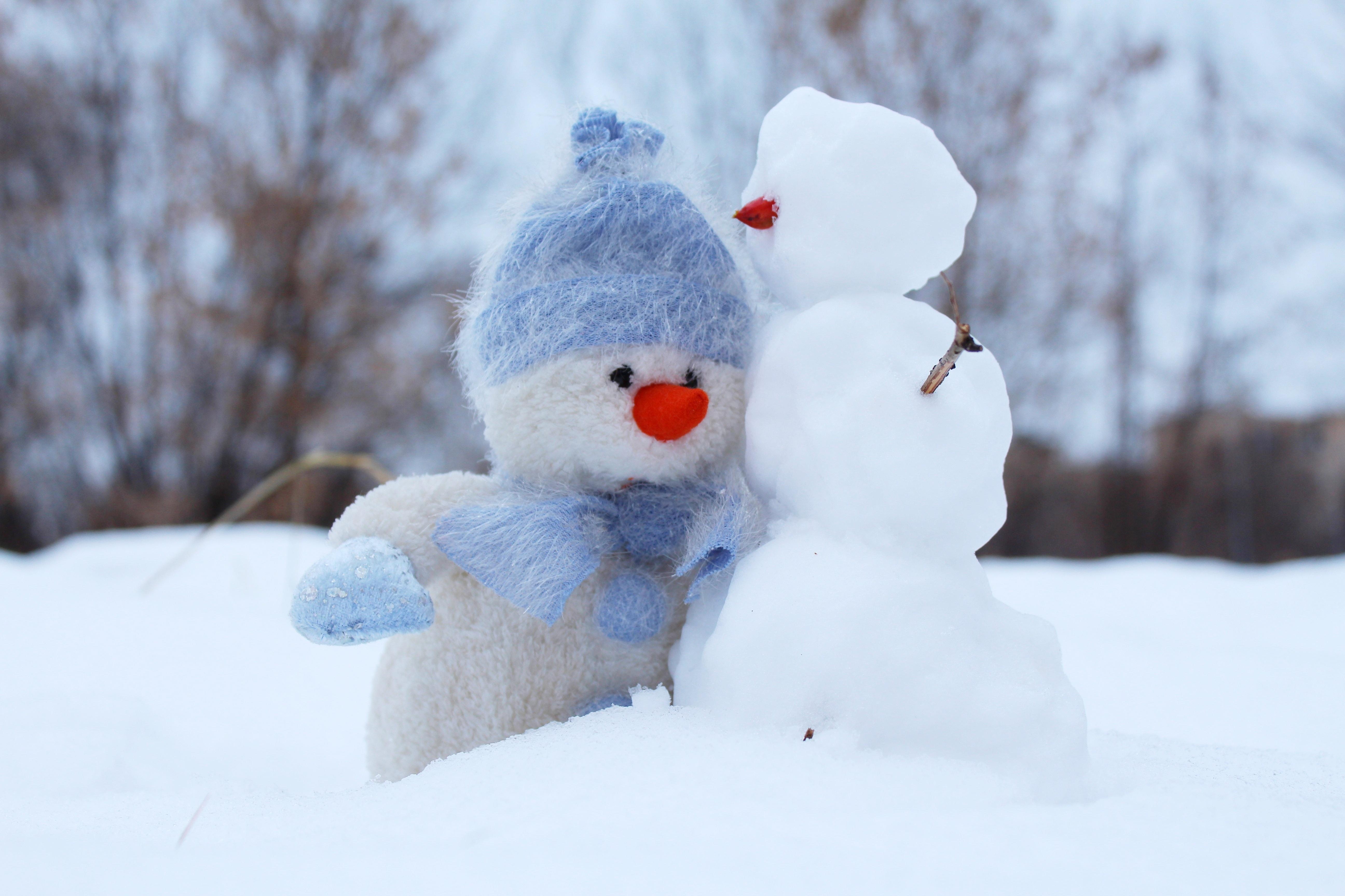 snowmen_stuffed n real_pexels-photo-269370