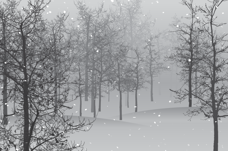 snow-1848346_1280_pixabay_cropped