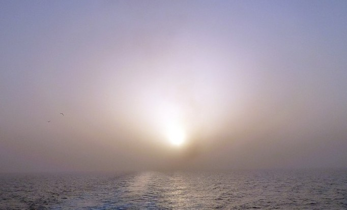 misty sunset ocean-140256_960_720_pixabay_cropped
