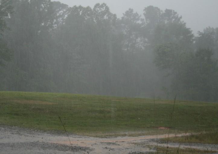 rain on dirt drive_IMG_4663 (2)