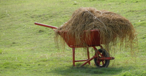 wheelbarrow-full-of-hay_stockvault_600x314px