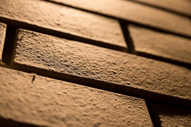 brick wall_lake-dusia-1613967_1280_by Jankos_Pixabay