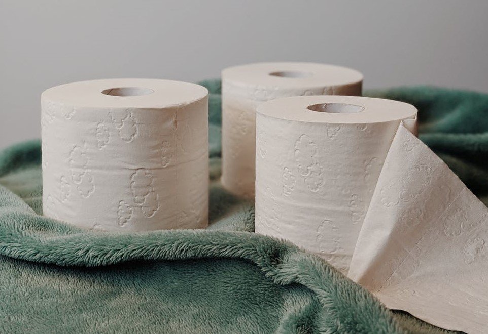 toilet paper rolls_pexels-photo-3963085_Vie Studio_Pexels_cropped