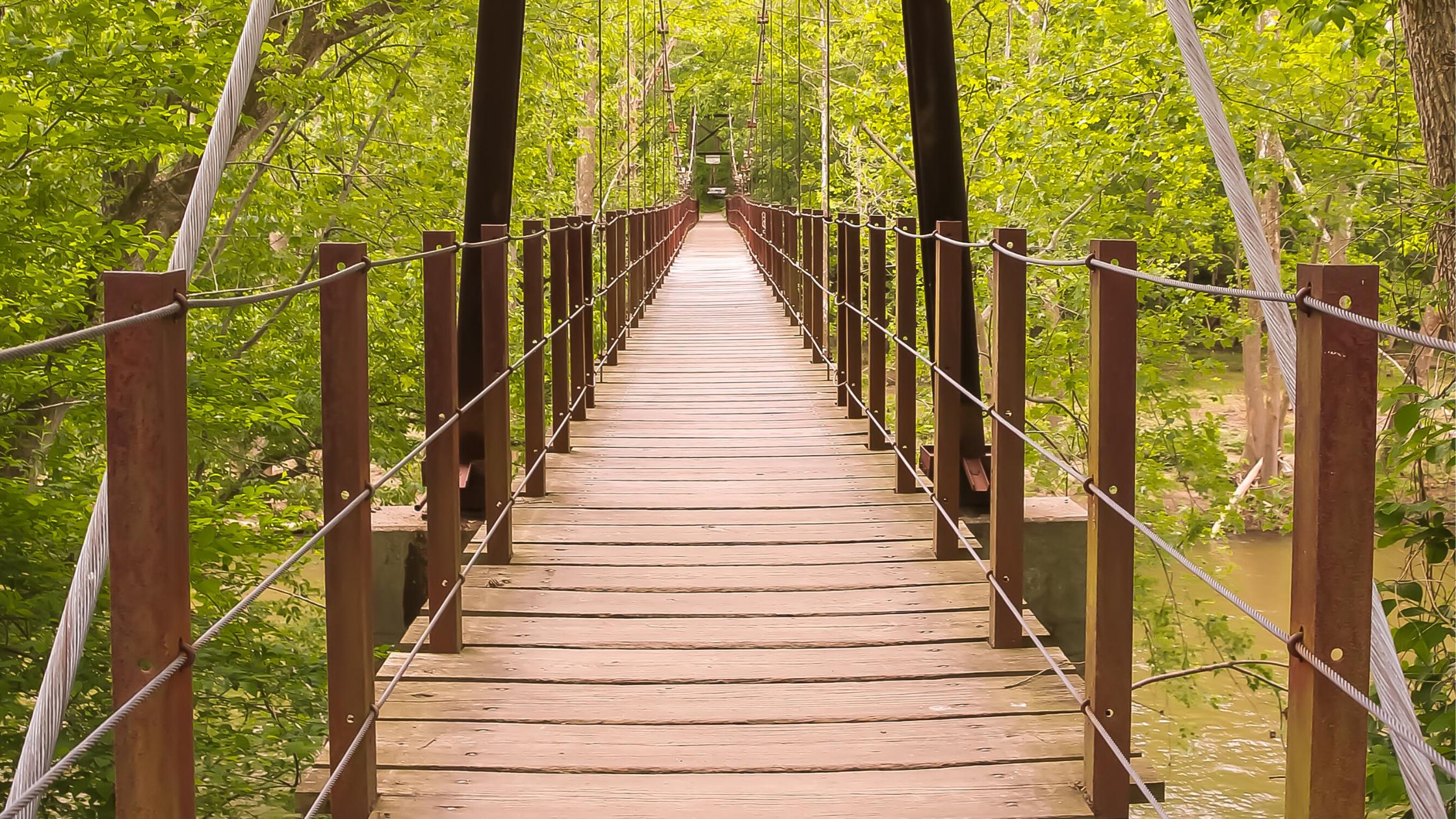 wooden bridge in woods_pexels_cropped